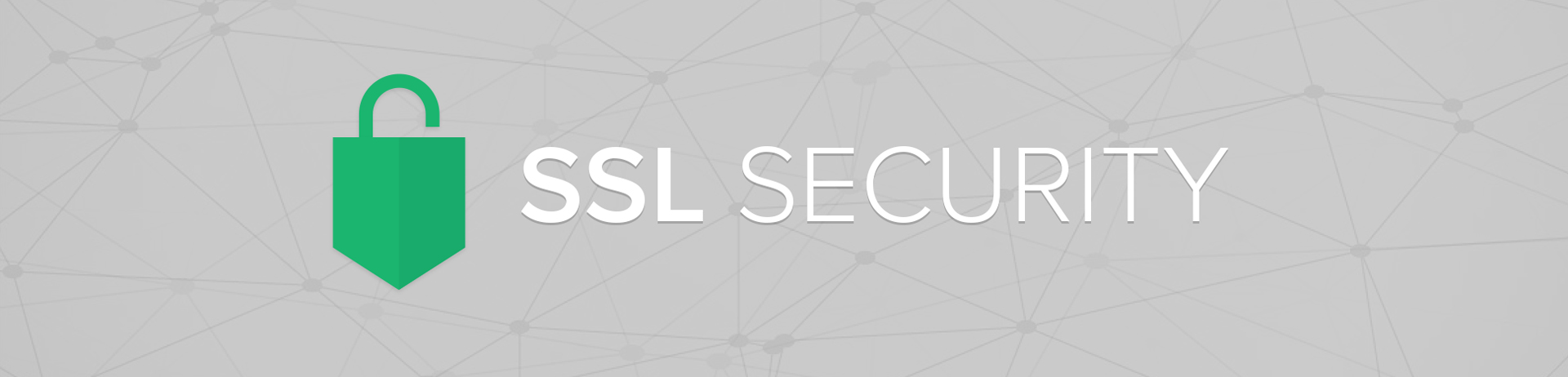 what you need to know about SSL and your website.